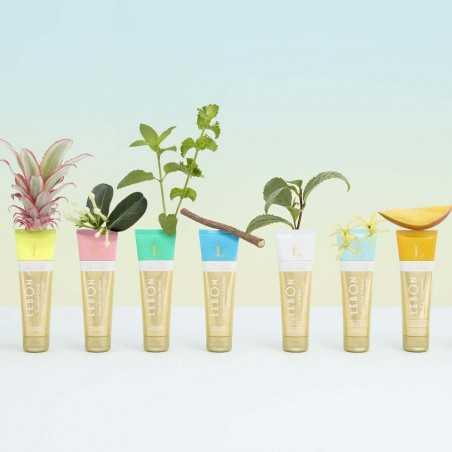 LeBon - Dentifrice Bio Tropical Crush - Ananas, Rooibos & Menthe - Select store éthique Cosmétiques Vegans